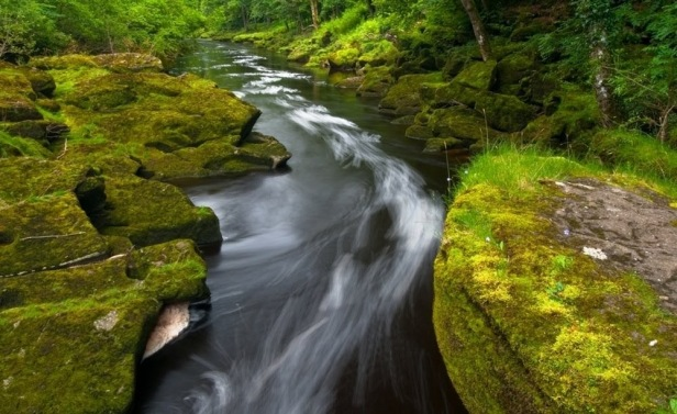 rio estreito